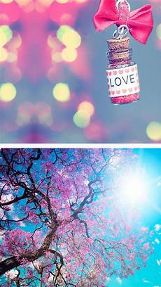 Summer Home Screen Girly Wallpapers