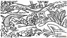 dibujo de celofisis protosuchus y saltoposuchus para