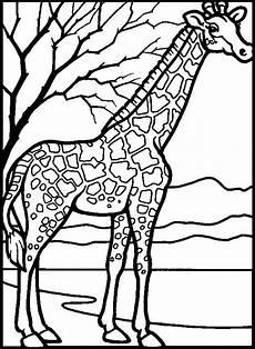 Malvorlagen Giraffen Gratis Giraffe Malvorlagen Kostenlos 1040 Malvorlage Giraffe