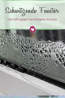 Beschlagene Scheiben Was Gegen Kondenswasser Am Fenster
