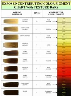 aveda hair color chart hair color wheel pin by jamez smith on cosmetology in 2019 hair color hair level chart hair levels