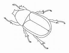 Malvorlagen Insekten In Sch 246 Ne Ausmalbilder Malvorlagen Insekten Ausdrucken 3