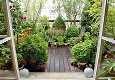 fiori in terrazzo fiori perenni da balcone immagini di balconi fioriti