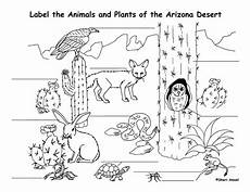 animals in the desert coloring pages 17026 desert coloring pages getcoloringpages