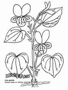 Blumen Malvorlagen Xl Blumen 30 Malvorlagen Xl