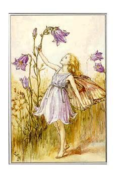 fiori e fate fate oltre il cancello