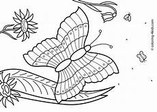 summer colouring pages printable 17636 27 summer season coloring pages part 2 free printables