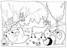 detailed coloring page forest creatures with images animal coloring pages animal coloring