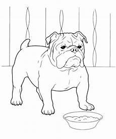 dessin bull animali bulldog inglese davanti alla sua ciotola