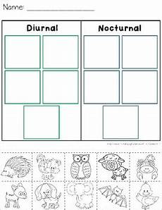 nocturnal animals worksheets 13983 diurnal and nocturnal animals worksheets by catherine s tpt