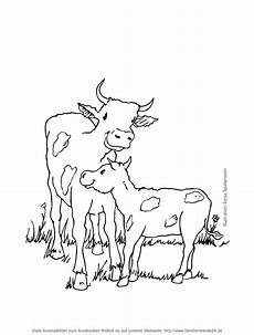 37 malvorlagen kuh scoredatscore for kuh malen