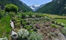 giardini di montagna orti di montagna fai da te in giardino
