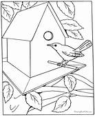 Free Coloring Pages For Adults  Letscoloringpagescom