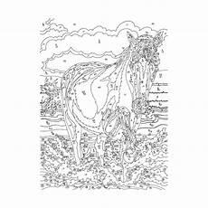 ausmalbilder malen nach zahlen pferde top kostenlos