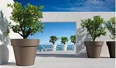 grand pot fleurs exterieur tout le mat 233 riel pour jardin