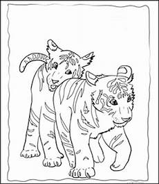 Malvorlagen Tiger Ausmalbilder Zum Ausdrucken Ausmalbilder Tiger