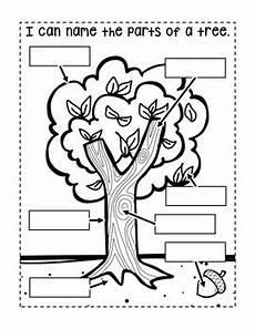kindergarten interactive science journal trees editable tpt