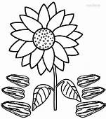 Sunflower Drawing For Kids At GetDrawings  Free Download