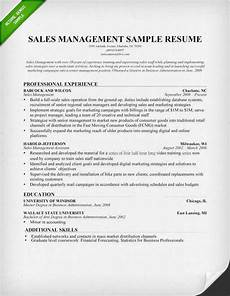 sales manager resume sle writing tips
