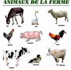 animaux de la ferme les animaux de la ferme fle les animaux