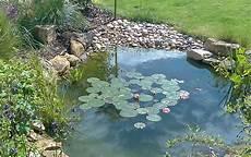 ponds go wild landscapes