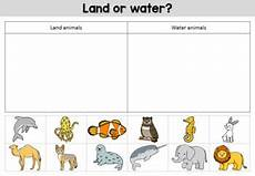water animals worksheets for kindergarten 14080 animal habitats worksheets by bright buttons teachers pay teachers
