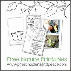 nature worksheets free 15085 nature study with preschoolers and maureen spell preschoolers and peace