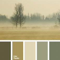 beige brown with a shade of green brown green colour of fog colours of autumn light marsh