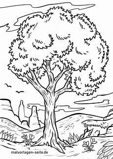 Jahreszeiten Baum Ausmalbild Malvorlage Baum Kostenlose Ausmalbilder