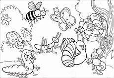realistic insect coloring pages at getdrawings free
