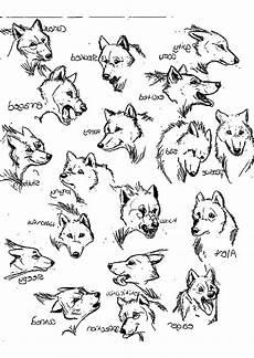 Malvorlagen Wolf Pdf Wolf Bilder Zum Ausmalen Das Beste 25 Sch 246 N