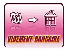 payer par virement bancaire sur paiement securise programme minceur figuactiv 06 98 98 07 28