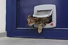 installer une chatière installer une chati 232 re sur une porte bois pvc verre
