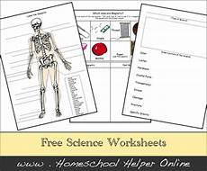 science worksheets free 13417 school science projects t b