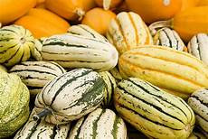 types of squash real simple