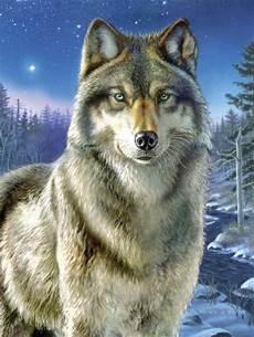 Malvorlagen Wolf Wolf Malen Nach Zahlen Mammut Malvorlagen Motive