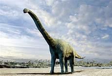 malvorlage dinosaurier langhals