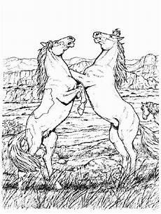 Ausmalbilder Erwachsene Kostenlos Pferde Ausmalbilder Pferde 25 Ausmalbilder F 252 R Kinder