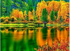 Fall Colors Wallpaper   WallpaperSafari