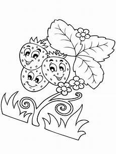 ausmalbilder malvorlagen erdbeere kostenlos zum