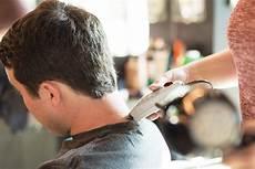 barber shop hair salon birds barbershop
