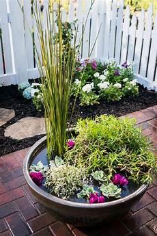 how to make a water garden in a pot hgtv