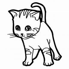 sketsa gambar kucing untuk anak tk 81021 nama untuk