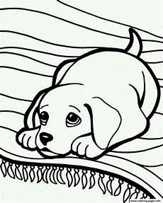 ausmalbilder hundebabys gratis sleepy 6ea7 coloring pages printable