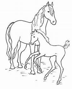 Einfache Malvorlage Pferd Die 53 Besten Bilder Pferde Pferde Pferde