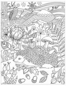 hedgehog coloring page ausmalbilder ausmalbilder
