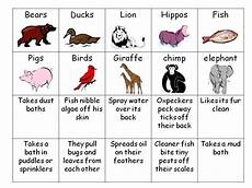 animal adaptations worksheets 2nd grade 13792 animal worksheet new 899 animal adaptations worksheets fourth grade