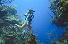 the ultimate scuba diving guide the abroad