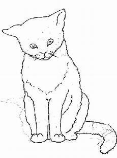 Katzen Malvorlagen Rom N De 68 Ausmalbilder Katze