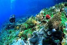 5 Tempat Wisata Seru Dan Keren Di Makassar Airy Rooms